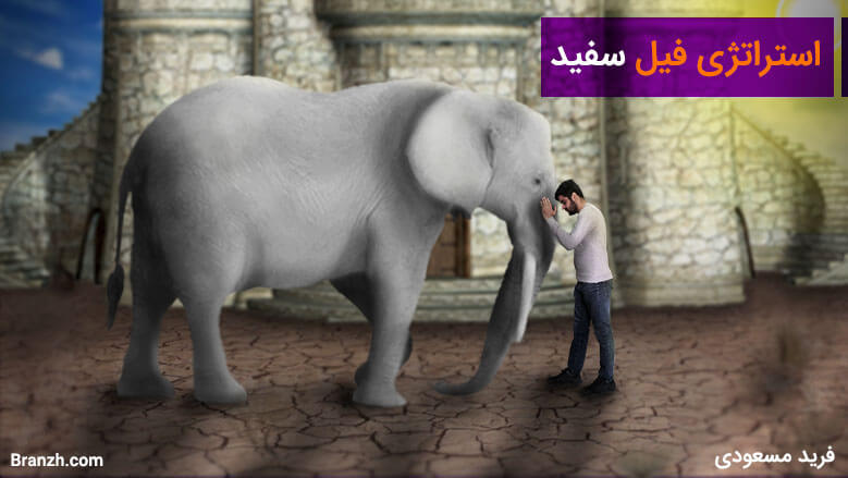 تصویر فیل سفید استراتژی (فرید مسعودی)