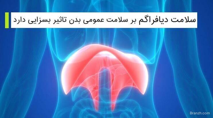 سلامت دیافراگم بر سلامت عمومی بدن تاثیر بسزایی دارد